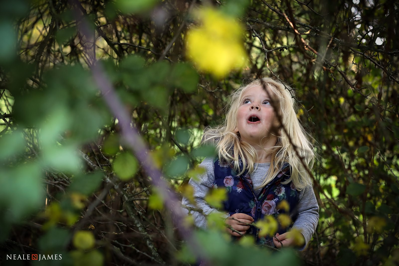 A young girl looks up from sitting on the forest floor with a bright yellow flower in the foreground