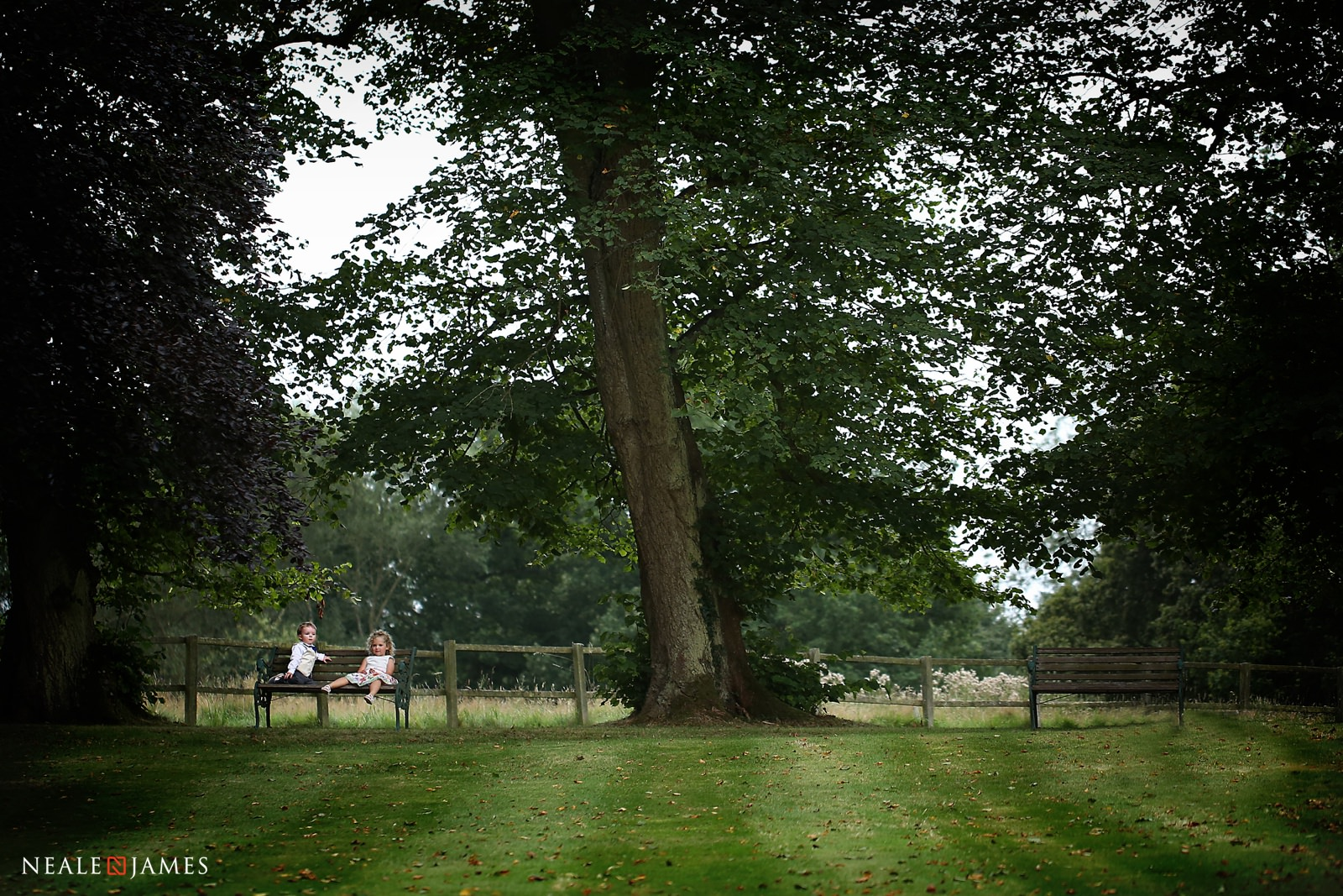 Colour photograph of a Silchester House wedding - guests relaxing next to the trees